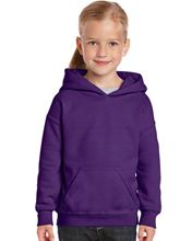 Picture of Heavy Blend™ Youth Hooded Sweatshirt Purple