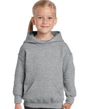 Picture of Heavy Blend™ Youth Hooded Sweatshirt Sport Grey
