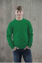 Picture of Team Sweater AWDIS Kelly Green