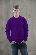 Picture of Team Sweater AWDIS Purple