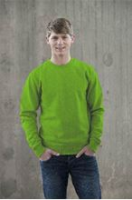 Picture of AWDIS Sweatshirt Lime Green