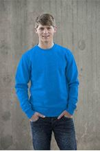 Picture of Sweater AWDIS voor Teams Sapphire Blue