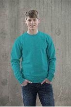 Picture of Sweater AWDIS voor Teams Turquoise Surf