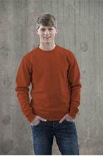Picture of Sweater AWDIS voor Teams Burnt Orange