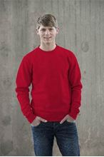 Picture of Sweater AWDIS voor Teams Fire Red