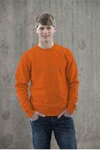 Picture of Sweater AWDIS voor Teams Orange Crush
