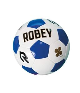 Robey Ball FIFA Approved B-junioren