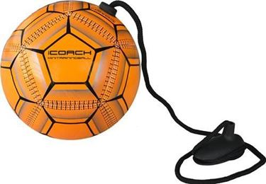 Coach Mini Training Ball 2.0